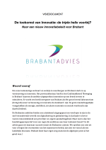 brabantadvies-visiedocument